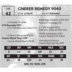 GNERER REMEDY 9040