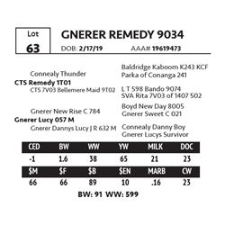 GNERER REMEDY 9034