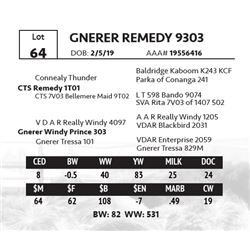 GNERER REMEDY 9303