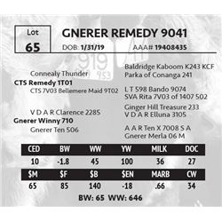 GNERER REMEDY 9041