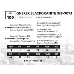 GNERER BLACKGRANITE 038-9093