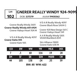 GNERER REALLY WINDY 924-9099