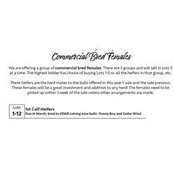 1st Calf Heifers Lots 1-12