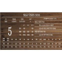 SRJJ VISION 9099