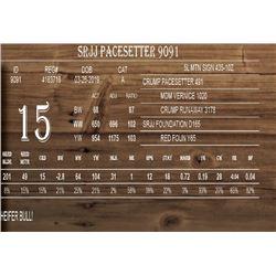 SRJJ PACESETTER 9091