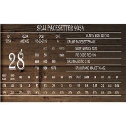SRJJ PACESETTER 9054