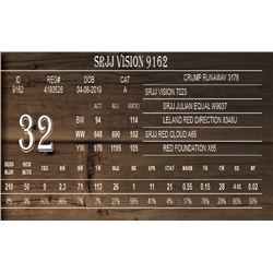 SRJJ VISION 9162