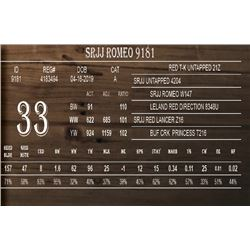 SRJJ ROMEO 9181
