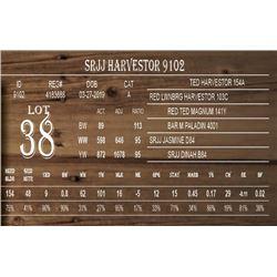 SRJJ HARVESTOR 9102