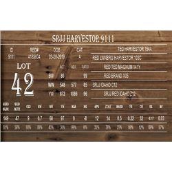 SRJJ HARVESTOR 9111