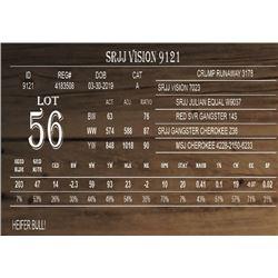 SRJJ VISION 9121