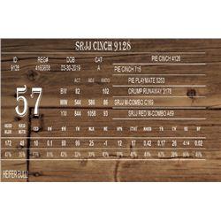 SRJJ CINCH 9128