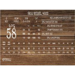 SRJJ REBEL 9022