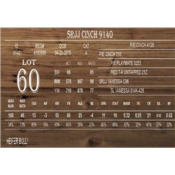 SRJJ CINCH 9140