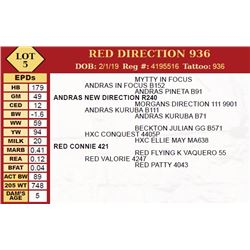 RED DIRECTION 936