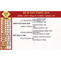 RED STETSON 924