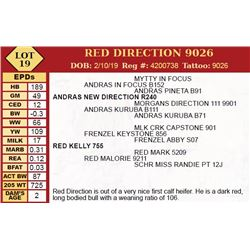 RED DIRECTION 9026