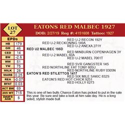 EATONS RED MALBEC 1927