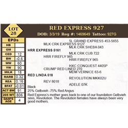 RED EXPRESS 927