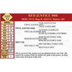 RED JUSTICE 988
