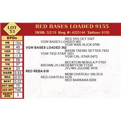 RED BASES LOADED 9155