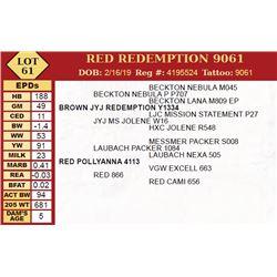 RED REDEMPTION 9061