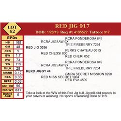 RED JIG 917