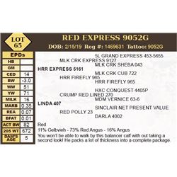 RED EXPRESS 9052G