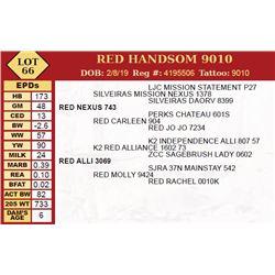 RED HANDSOM 9010