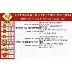 EATONS RED REDEMPTION 1934
