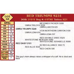 RED TRIUMPH 9231