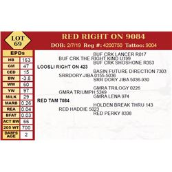 RED RIGHT ON 9084