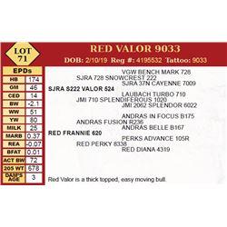 RED VALOR 9033