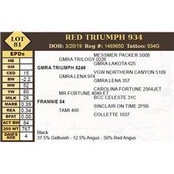 RED TRIUMPH 934