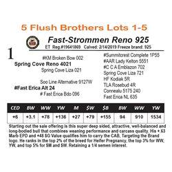 Fast-Strommen Reno 925