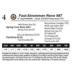Fast-Strommen Reno 987