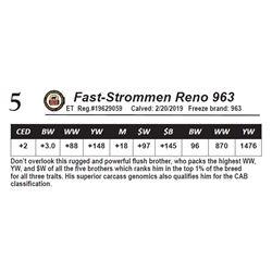 Fast-Strommen Reno 963