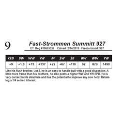Fast-Strommen Summitt 927