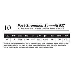 Fast-Strommen Summitt 937