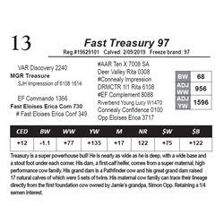 Fast Treasury 97