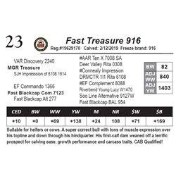 Fast Treasure 916