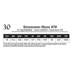Strommen Reno 978
