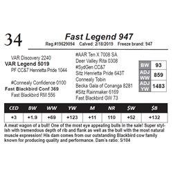 Fast Legend 947