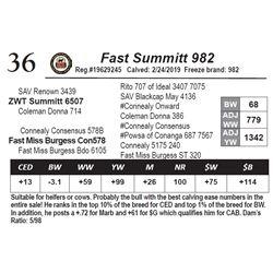 Fast Summitt 982