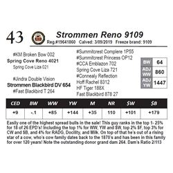 Strommen Reno 9109