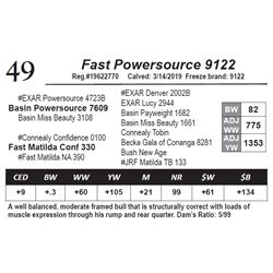 Fast Powersource 9122