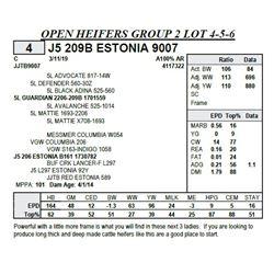 J5 209B ESTONIA 9007
