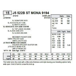 J5 522B ST MONA 9194