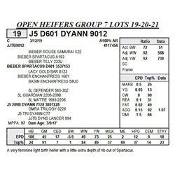 J5 D601 DYANN 9012