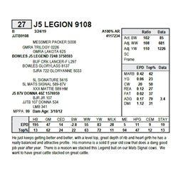 J5 LEGION 9108